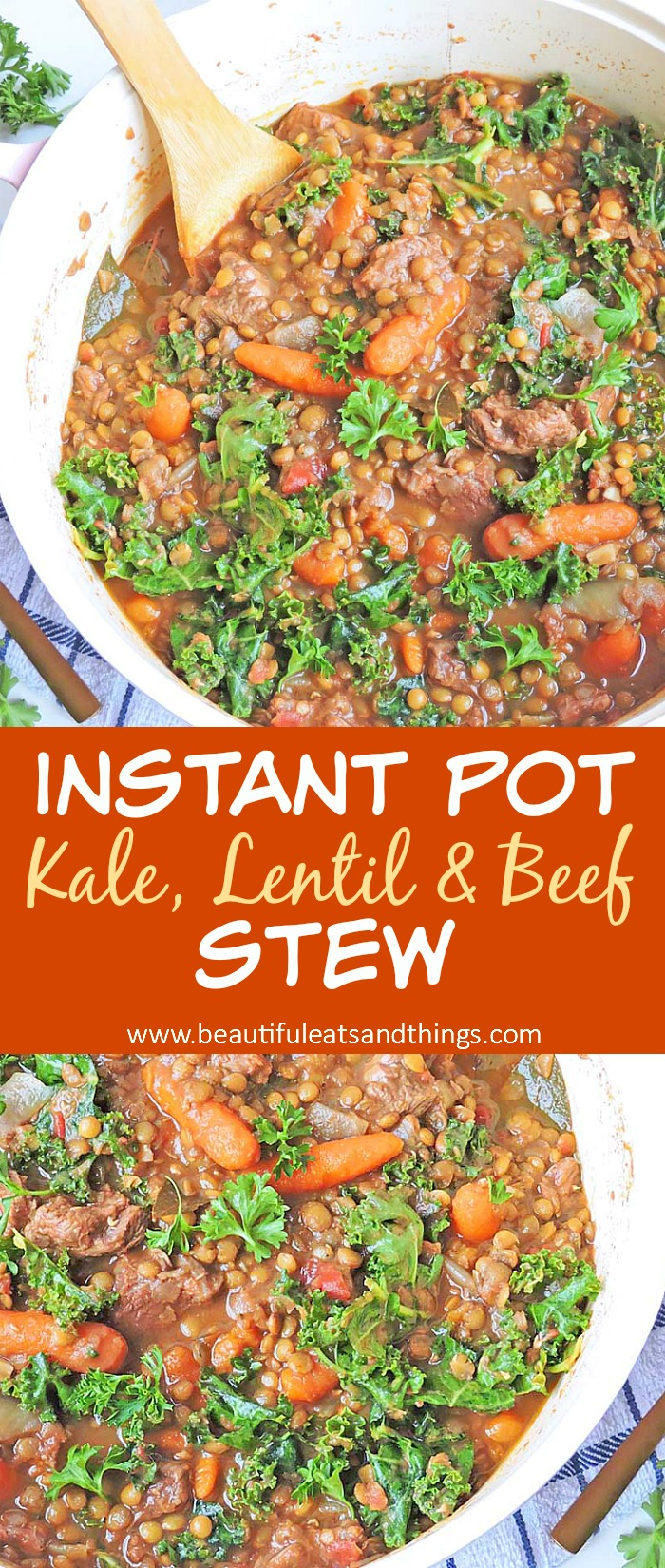 Kale Lentil and Beef Stew
